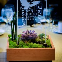 Centerpieces incorporating logo and message