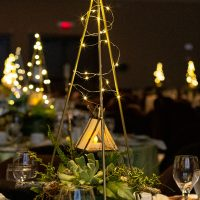 Mini tents with forest greens complete the starry night centerpiece