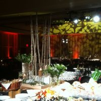 Buffet decor with birch and glass for a reception