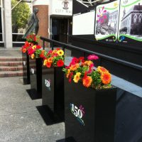 Planters with Logo added make a colourful pathway